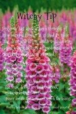 FB_IMG_1626004449391.jpg