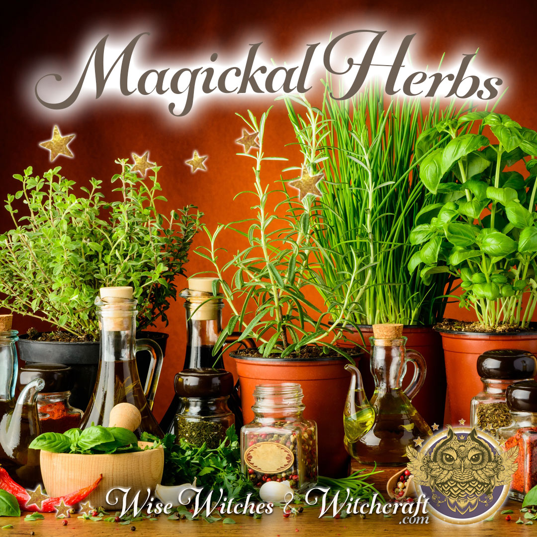 Magickal Herbs 1080x1080