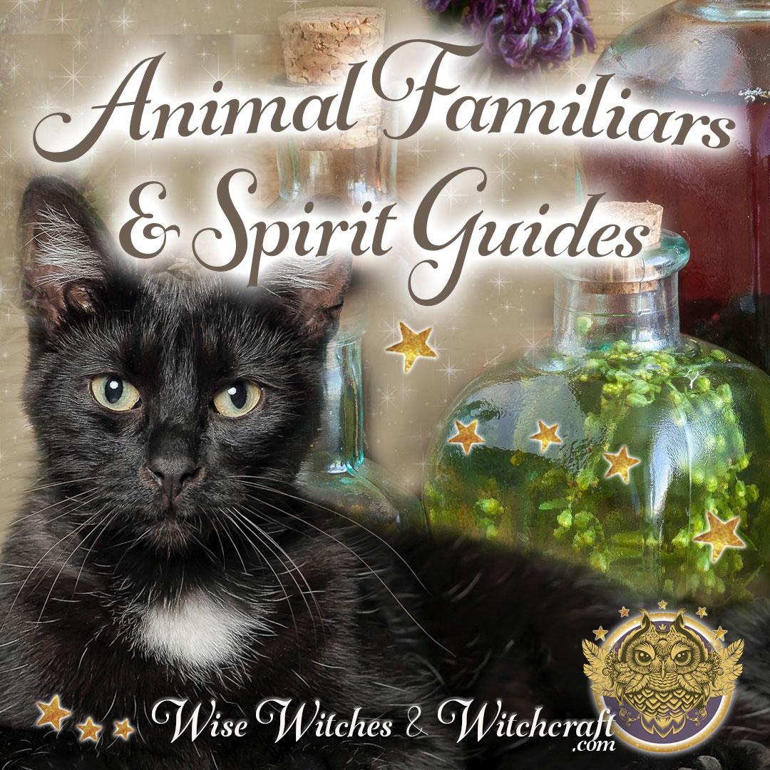 Spirit, Totem, Power Animals & Familiars 1080x1080