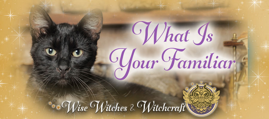 What is Your Familiar - Witch Quiz 900x400