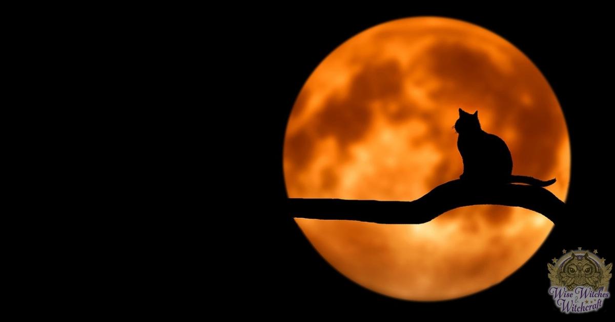 moon magic for financial gain 1200x630