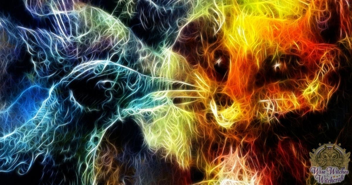 animal messenger spirit guide 1200x630