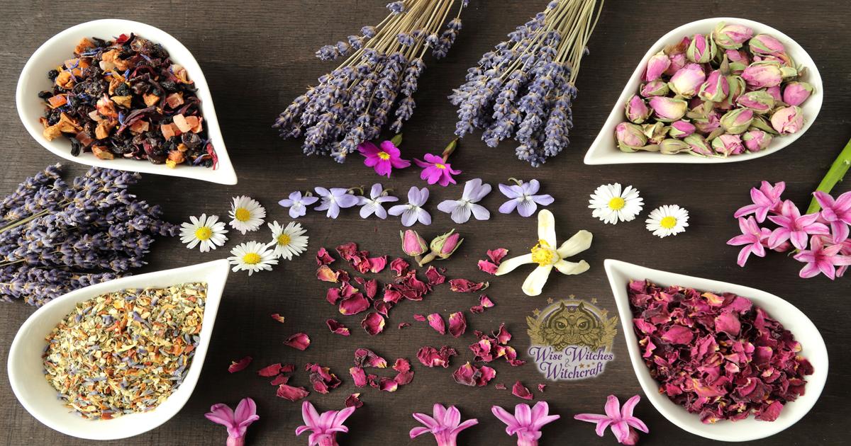 aromatherapy magick correspondences 1200x630