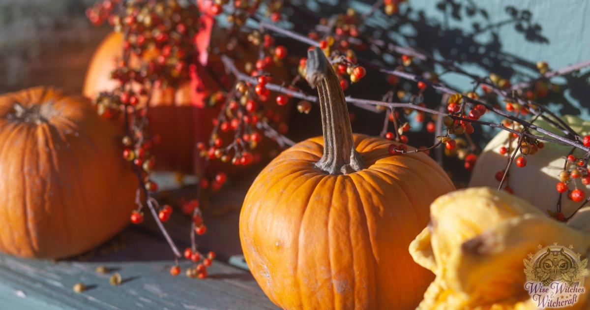 Samhain and Halloween Herbs and Plants
