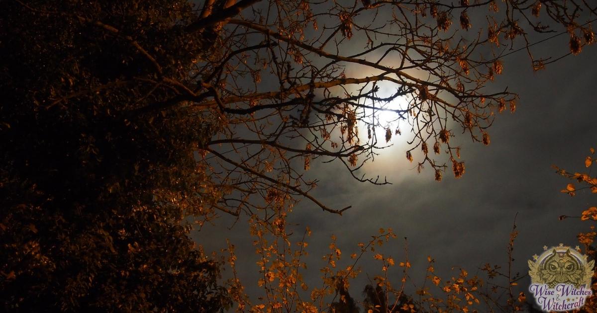 esbat reflections for full moon in november 1200x630