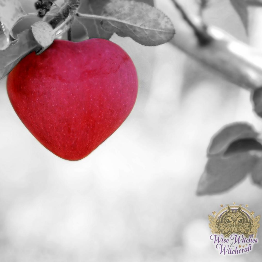 magic magick edibles feeding heart and soul 1200x630